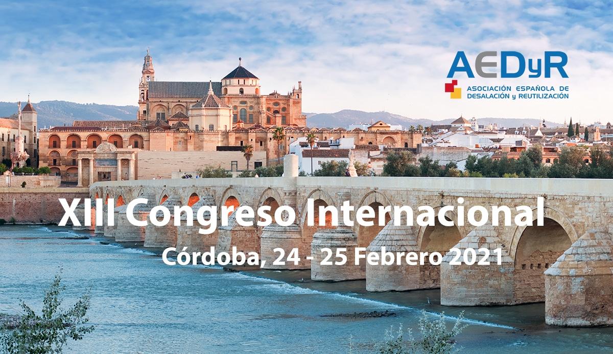 Banner XIII Congreso Internacional AEDyR